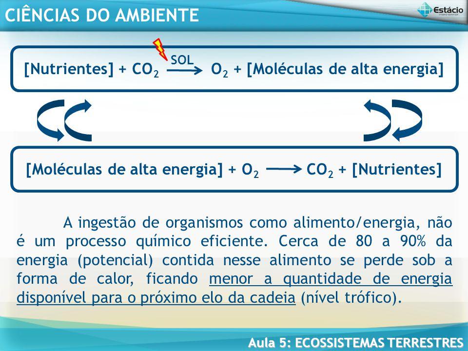 [Nutrientes] + CO2 O2 + [Moléculas de alta energia]